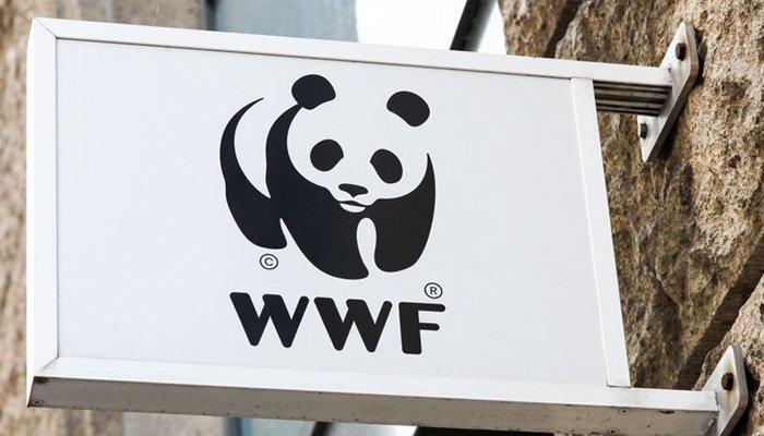 WWF'in 10 Adımlık Gelecek Atılımı